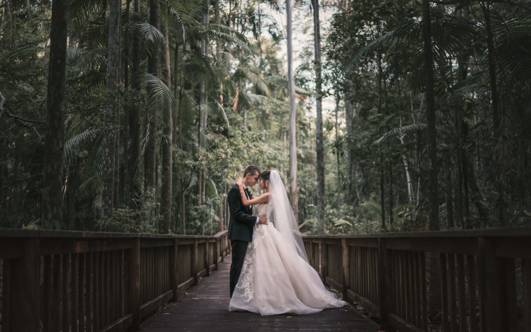 wedding photography Harrys lane buderim bride and groom portrait in rainforest